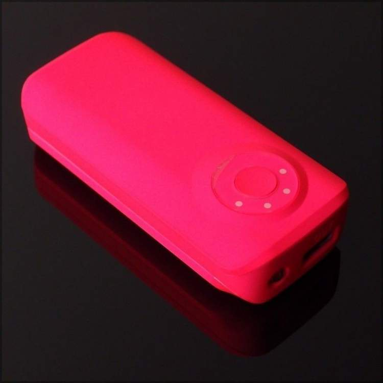 Powerbank  PowerNeed E5600P